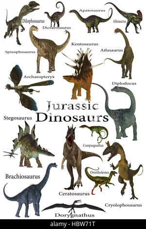 Jurassic Dinosaurs - This is a collection of various dinosaurs including carnivores, herbivores and flying reptiles - Stock Photo