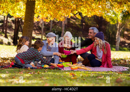 Family having breakfast at park - Stock Photo