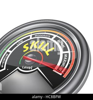 vector skill conceptual meter indicator isolated on white background - Stock Photo