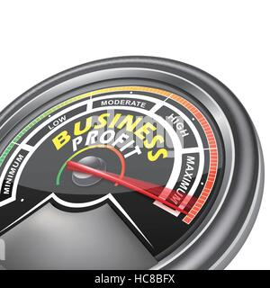 vector business conceptual meter indicator isolated on white background - Stock Photo