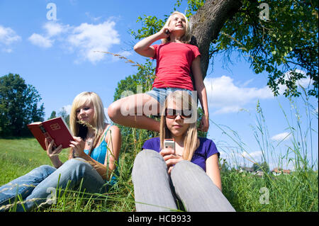 Three teenage girls with mobile phones and a book in meadow - Stock Photo