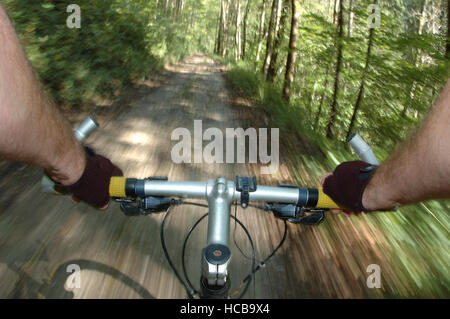 Mountain biking, hands on the handlebars, forest track - Stock Photo