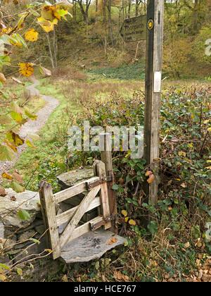 Footpath step stile in drystone wall with tiny wooden gate and finger post sign, Colwith, Cumbria, UK. - Stock Photo