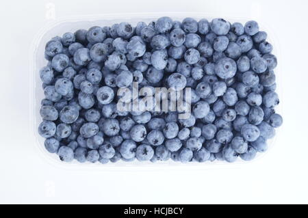 Fresh blueberries on the white background in zip lock transparent box - Stock Photo