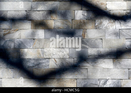 Dark shadows of tree branches cast on veneer wall made of cut rectangular natural stone - Stock Photo