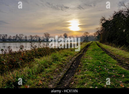 Evening winter sun seen setting on a large nature reserve as seen from a muddy bank with a pair of 4x4 tyre tracks. - Stock Photo