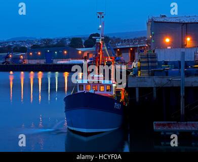 Trawler unloading fish at the quayside, Teignmouth, Devon, England UK - Stock Photo