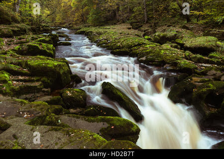 Autumn view of the River Wharfe at The Strid between Barden and Bolton Abbey, Yorkshire Dales National Park, - Stock Photo