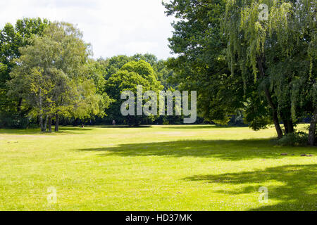 View of grass field and trees at Tiergarten in Berlin. The largest & oldest park, including family amenities, walking - Stock Photo