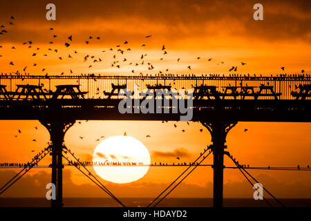 Aberystwyth Wales UK, Sunday 11 December 2016  UK Weather: At the end of a bright and sunny Sunday, the sun sets - Stock Photo