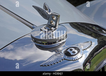 Black Bentley badge and Flying B mascot on top of radiator grille - Stock Photo