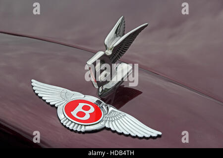 Red Bentley badge and Flying B mascot on front of maroon car - Stock Photo
