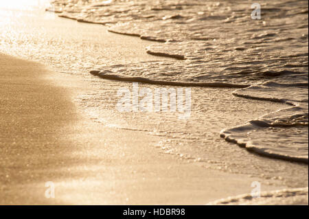 Sunset on the Caribbean Island of Turks & Caicos. Waves and foam break over the sand on a glowing golden beach - Stock Photo