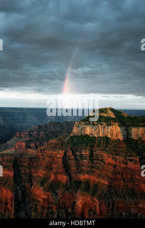 First light and summer monsoon showers create this rainbow over the North Rim of Arizona's Grand Canyon National Park.