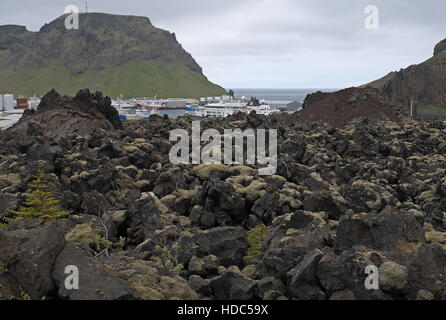 The harbour and town of Heimaey, seen over the lava field formed by the eruption of Eldfell in 1973, Heimaey, Iceland. - Stock Photo