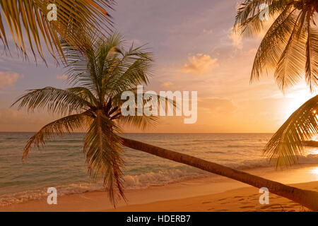 Sunset at Dover Beach, St. Lawrence Gap, South Coast, Barbados, Caribbean. - Stock Photo