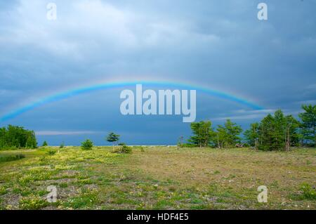 wide rainbow over the forest after the rain - Stock Photo