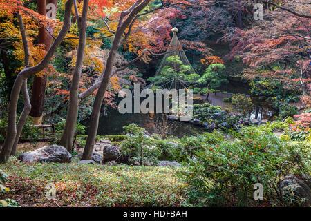Tonogayato Garden is a landscape garden in Kokubunji, Tokyo built for a magnate but is now owned by Tokyo Metropolitan - Stock Photo