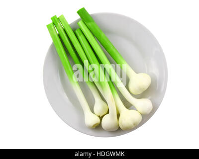 Young garlic on white background. Isolated over white - Stock Photo