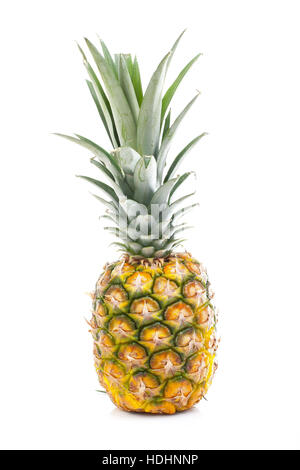 Pineapple in white studio background. Sweet delicious mellow tropical fruit. Full whole yellow pineapple. - Stock Photo