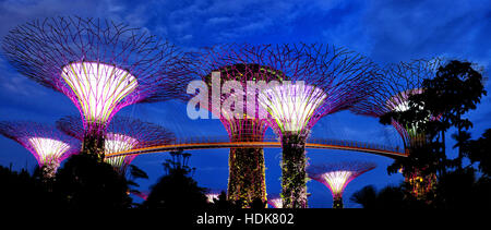 Supertree Grove at Gardens by the Bay, Singapore - Stock Photo