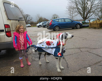 Young girl holding her Lurcher dog who is in Christmas fancy dress as the Dog's Dinner - Stock Photo