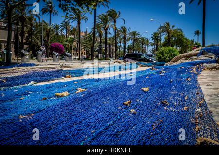 blue fishing net ropes laid flat on stone path in Palma city with bright flowers and palm trees - Stock Photo