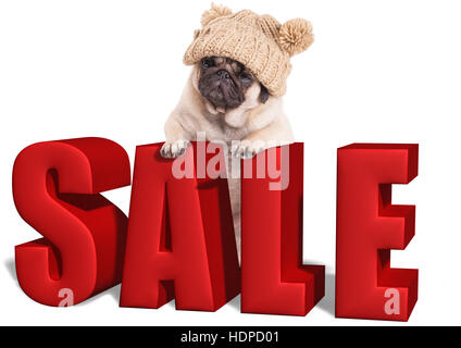 cute pug puppy dog hanging with paws on big red sale sign, isolated on white background - Stock Photo