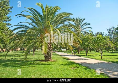Valencia, Turia Garden Park In Dry River Bed - Stock Photo