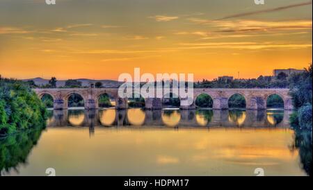 Roman Bridge across the Guadalquivir river in Cordoba, Spain - Stock Photo