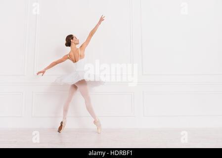 Graceful ballet dancer standing sideways on tiptoes - Stock Photo