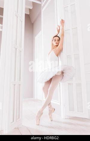 Elegant ballet dancer standing on tiptoes - Stock Photo