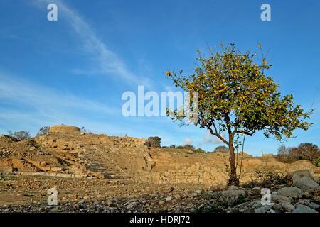 Ancient Hellenistic Amphitheatre in Paphos, Cyprus - Stock Photo