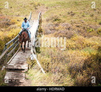 Cowboy and horse crossing bridge, Clearwater County; Alberta, Canada - Stock Photo