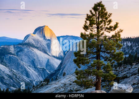 Half Dome seen from Olmsted Point, Yosemite National Park; California, United States of America - Stock Photo