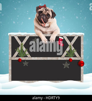 lovely cute pug puppy dog eating candy cane and hanging with paws on blank blackboard sign with wooden frame and - Stock Photo