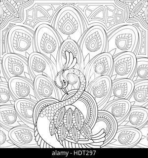 elegant peacock coloring page in exquisite style stock photo - Peacock Coloring Page