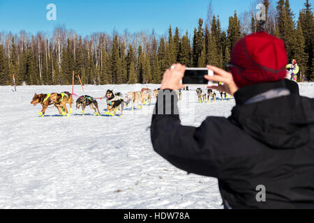 A woman tourist takes an smart phone photo of a musher in the start of the Iditarod Race on Willow Lake, Alaska, - Stock Photo