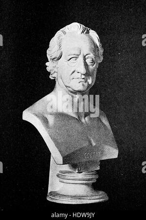 Bust of Johann Wolfgang von Goethe, 1749-1832, a German writer and statesman,, woodcut from the year 1880 - Stock Photo