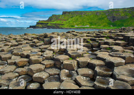 Coast of Giants Causeway in Northern Ireland - Stock Photo