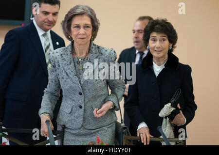 Madrid, Spain. 15th Dec, 2016. Queen Sofia of Spain during a meeting of  the music school 'Queen Sofia' in Madrid - Stock Photo