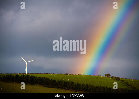Aberystwyth Wales UK, Thursday 15 December 2016 UK weather: In a bright interval between showers a beautiful rainbow - Stock Photo