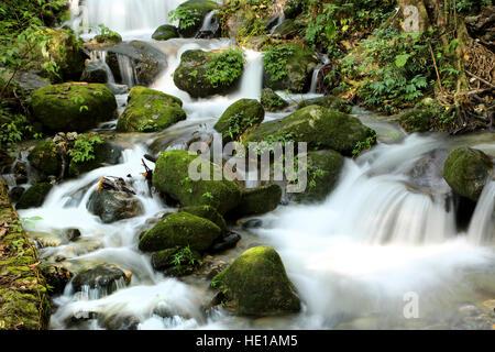 Beautiful waterfall in the Shivapuri Nagarjun National park, Kathmandu, Nepal - Stock Photo