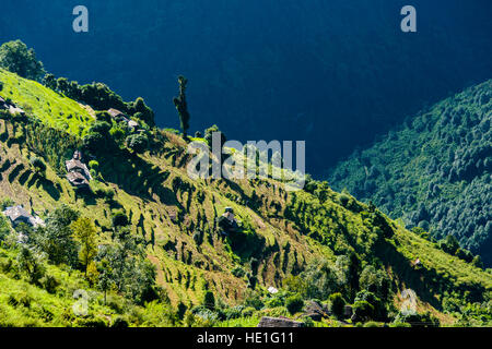 Aerial view on agricultural landscape with green terrace rice fields and farmers houses in Upper Modi Khola valley - Stock Photo