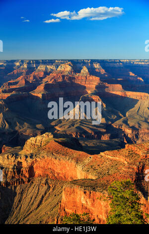 A late afternoon vertical view from Mather Point of the spectacular formations in Grand Canyon National Park, Arizona, - Stock Photo