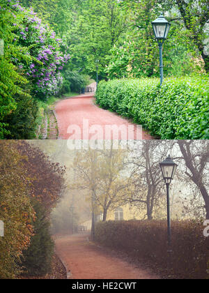 Forest Park in Spring and Autumn Seasons - Stock Photo