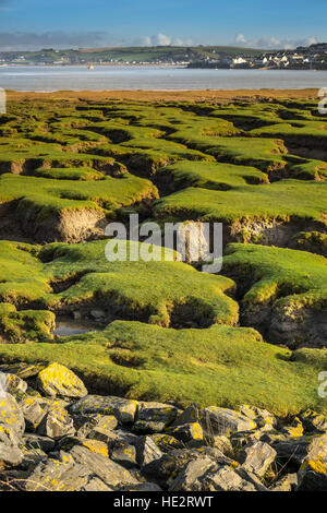 Northam Burrows. - Stock Photo