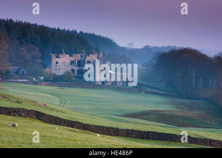 Pink winter sunrise sky & beautiful historic ancient sunlit Barden Tower ruins - scenic Dales countryside, Bolton Abbey Estate, Yorkshire, England GB.