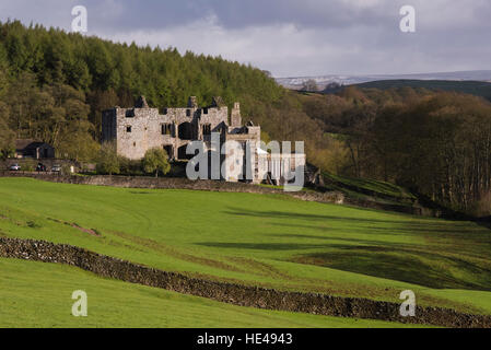 Barden Tower (sunlight on beautiful historic ancient ruin, hillside forestry trees, rolling hills) - Bolton Abbey Estate, Yorkshire Dales, England UK.
