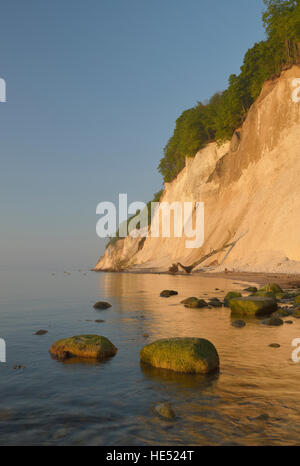 Chalk coast, Jasmund National Park, stones with algae, Baltic Sea beach, Sassnitz, Rügen, Mecklenburg-Western Pomerania - Stock Photo